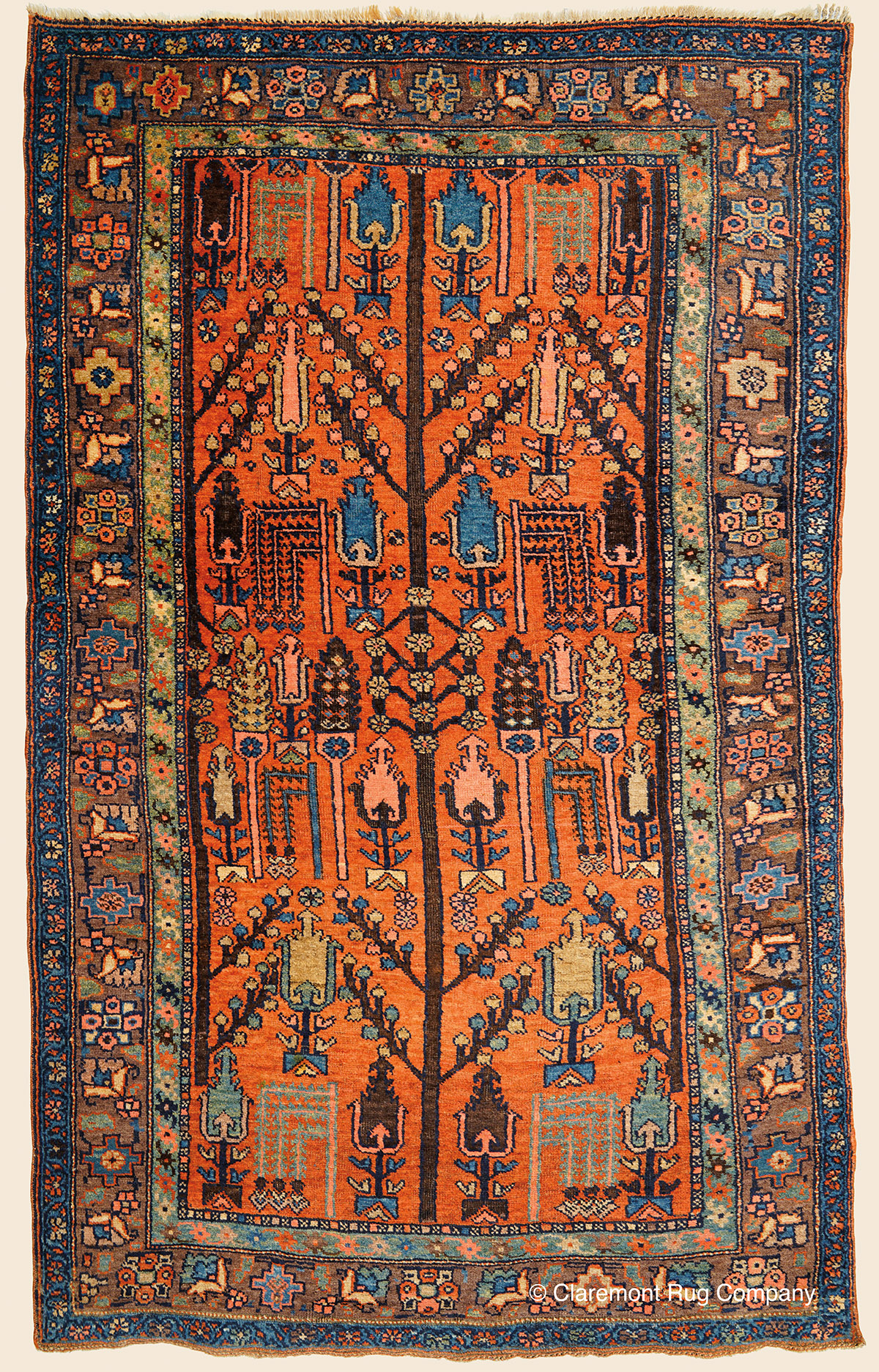 Kurdish Bijar Tree Of Life Northwest Persian Antique Rug