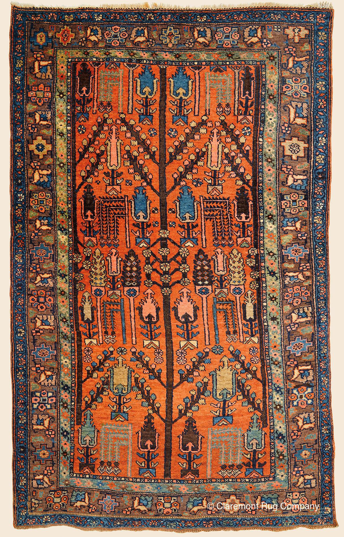 Kurdish Bijar Tree Of Life Northwest Persian Antique Rug Claremont Company