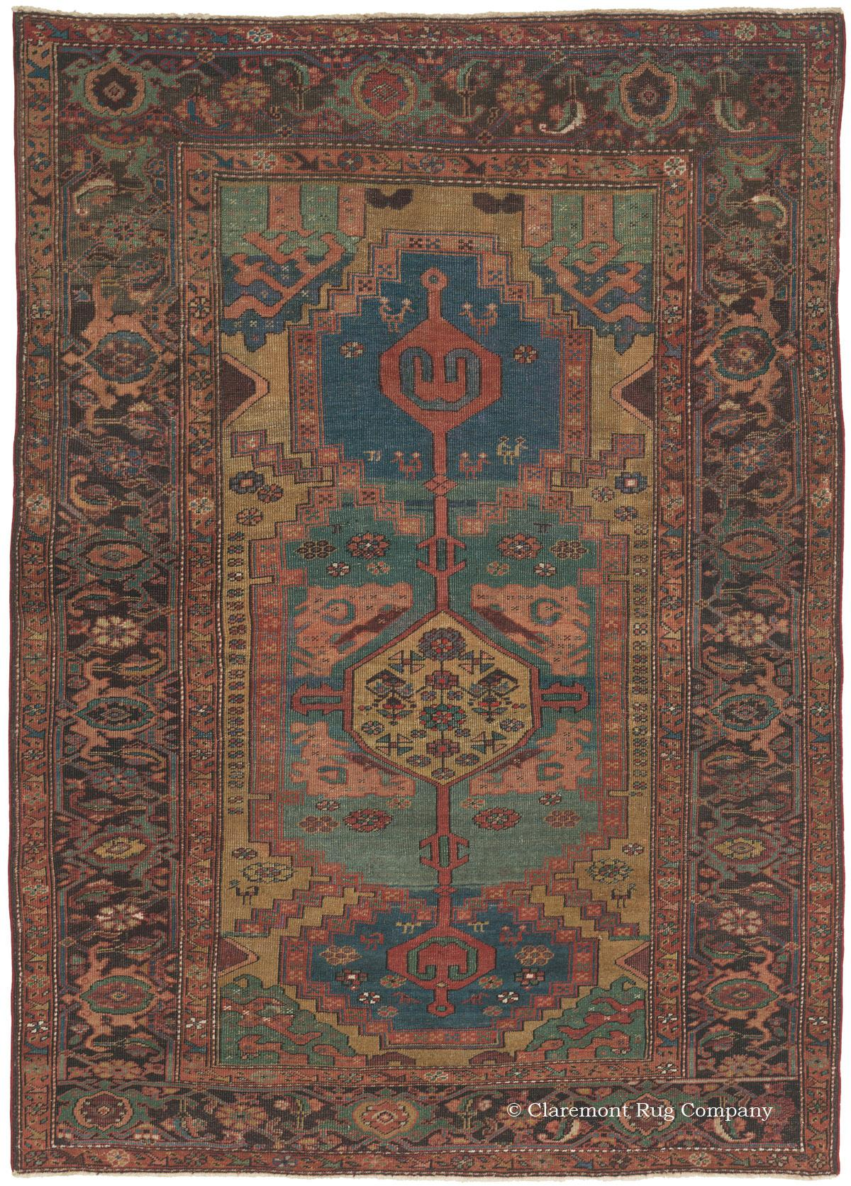 Perisan Rug with Prized Antique Carpet Designs