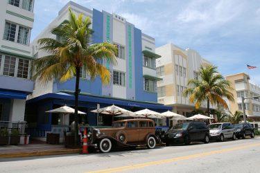 Antique Rugs in Miami Florida