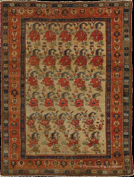 afshar-main-image-copy